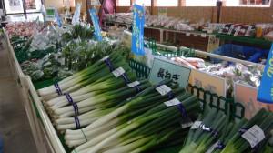 夏野菜フェア2